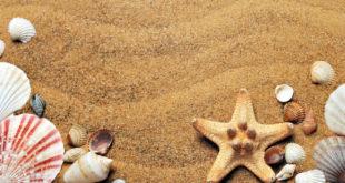 plage de mers les bains